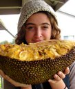 Jackfruit from Hāmākua Coast Farms, Umauma